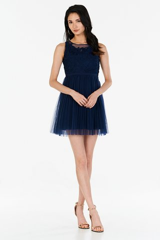 Grania Pleated Tulle Dress in Navy