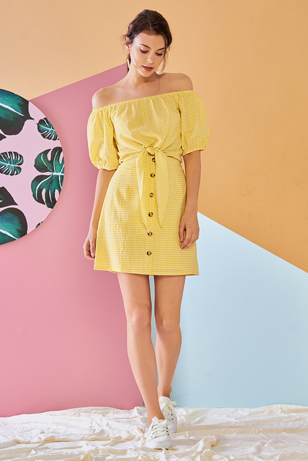 Arani Gingham Skirt