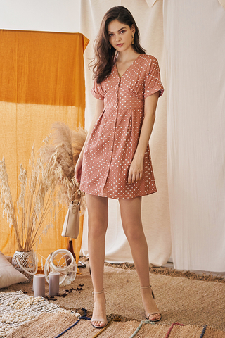 Andereen Polka Dotted Dress in Pink