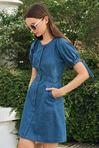 Delilia Denim Dress
