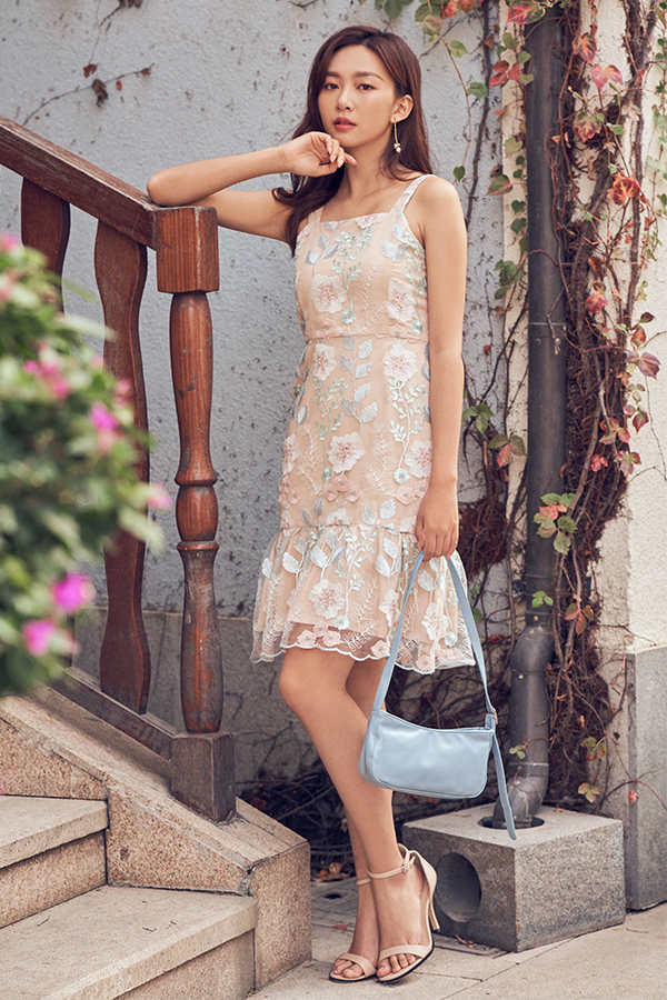 Kanaye Embroidered Dress in Nude