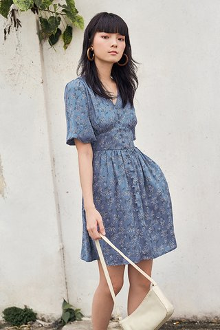 Fleura Dress in Periwinkle