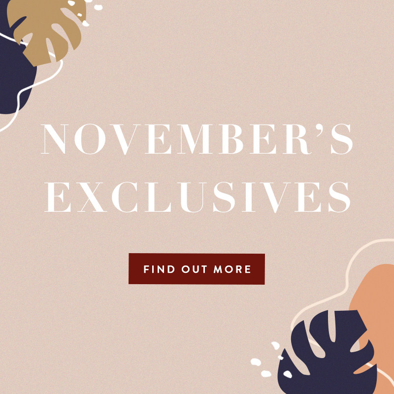 November 2019 Exclusives